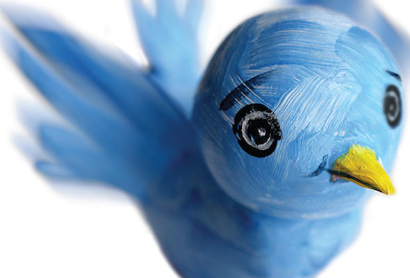 ILLUSTRATION: Twitter bird