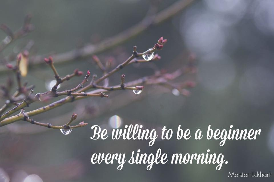 be willing to be a beginner quote